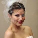 birdcage_veil-500x500