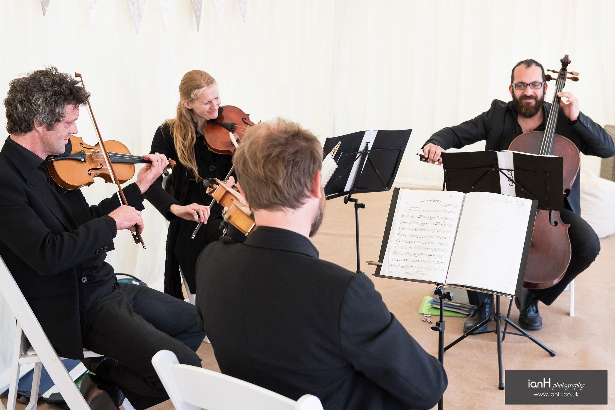 alani string quartet